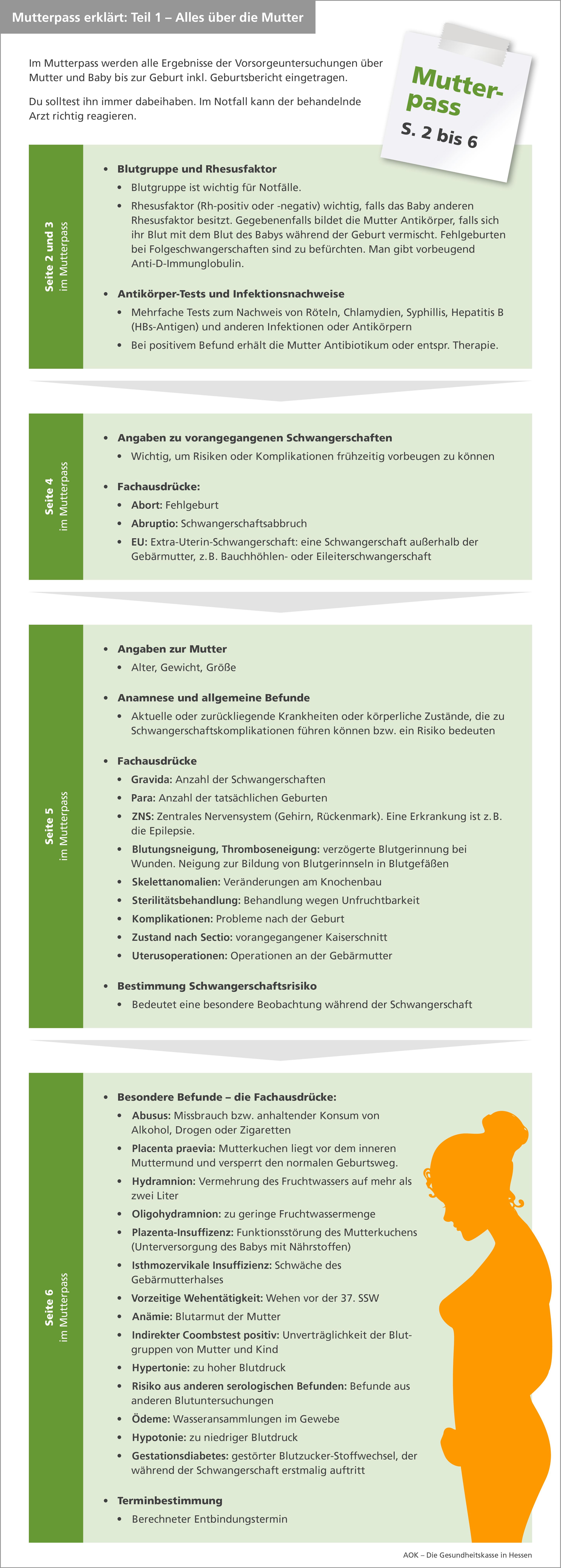 Infografik Mutterpass Teil 1