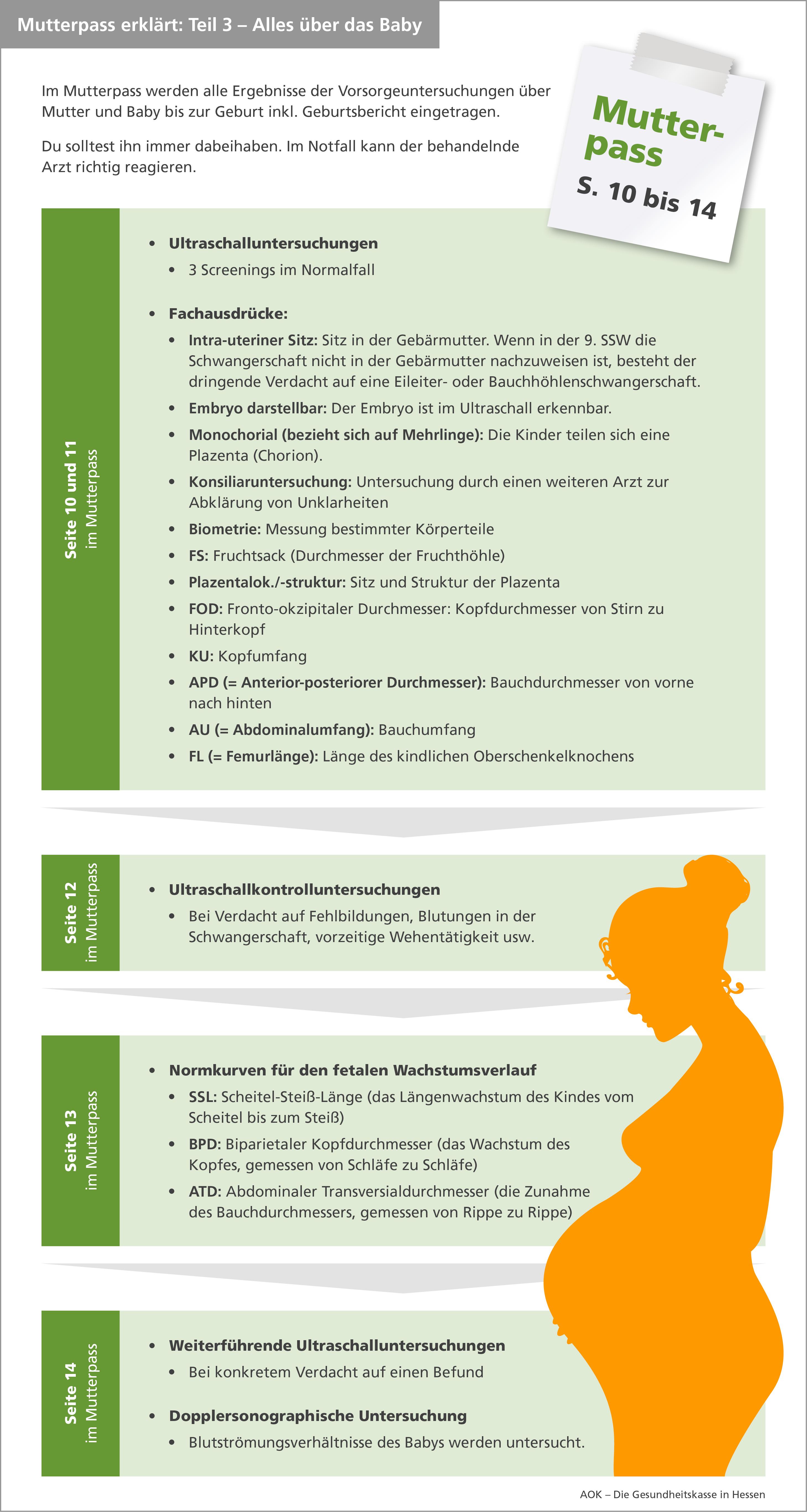 Infografik Mutterpass Teil 3