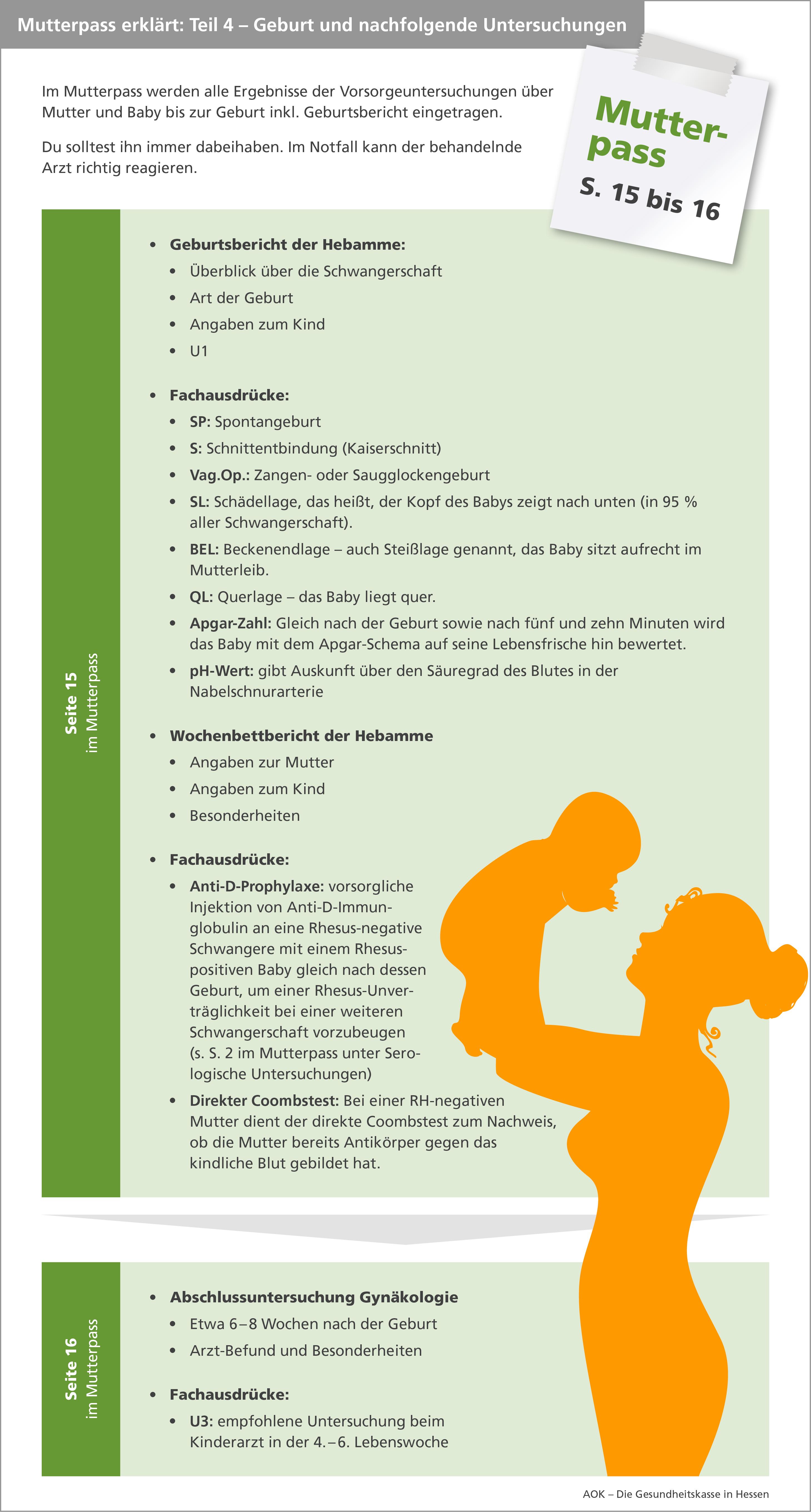 Infografik Mutterpass Teil 4
